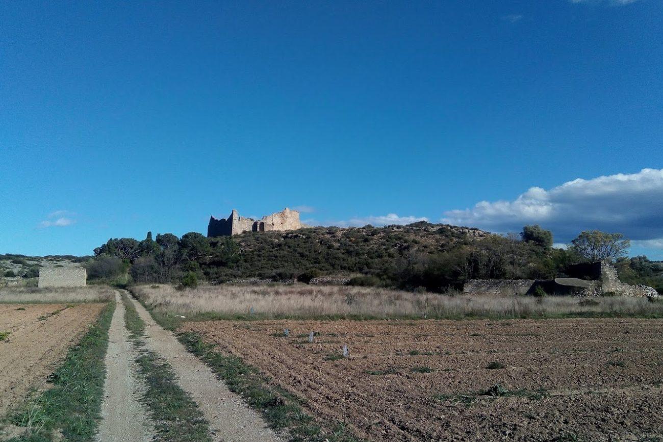 La ferme en ruine entre Fitou et Opoul